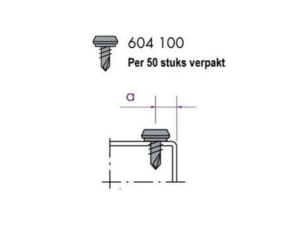 Klemschroef 604100 (per 50 stuks)